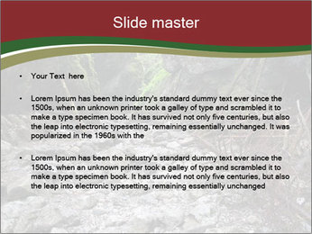 Wilderness PowerPoint Template - Slide 2