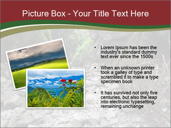 Wilderness PowerPoint Template - Slide 20
