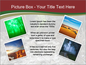 Wilderness PowerPoint Template - Slide 24