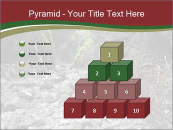 Wilderness PowerPoint Template - Slide 31