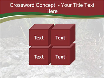 Wilderness PowerPoint Template - Slide 39