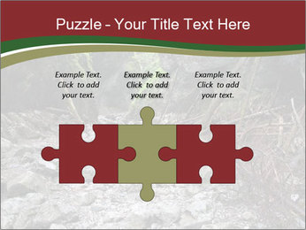 Wilderness PowerPoint Template - Slide 42