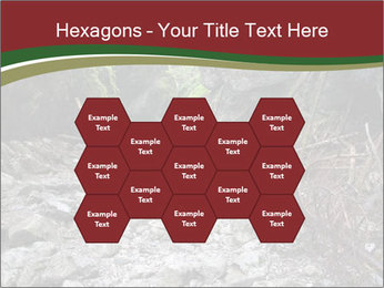 Wilderness PowerPoint Template - Slide 44