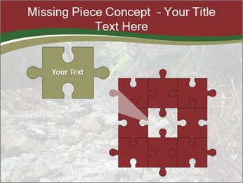 Wilderness PowerPoint Template - Slide 45