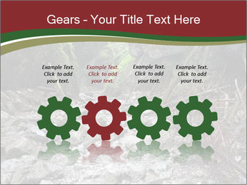 Wilderness PowerPoint Template - Slide 48