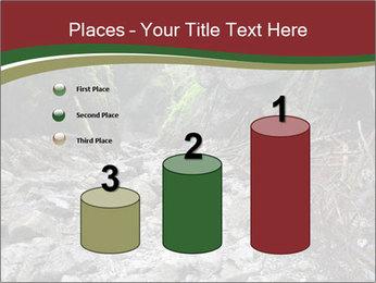 Wilderness PowerPoint Template - Slide 65