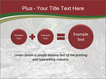 Wilderness PowerPoint Template - Slide 75