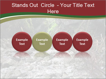 Wilderness PowerPoint Template - Slide 76