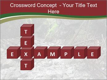Wilderness PowerPoint Templates - Slide 82