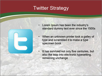 Wilderness PowerPoint Template - Slide 9