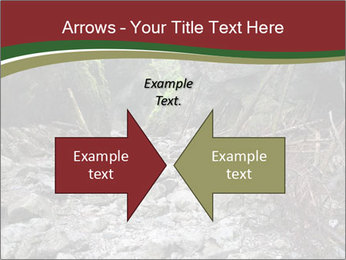 Wilderness PowerPoint Template - Slide 90