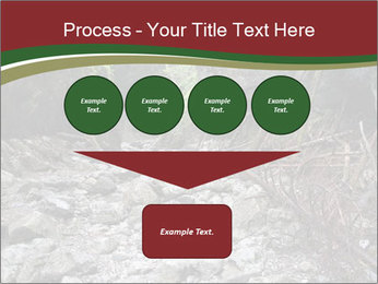 Wilderness PowerPoint Template - Slide 93