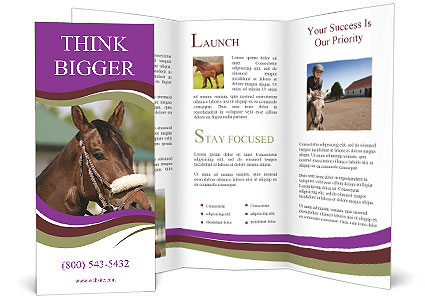 0000089191 Brochure Template