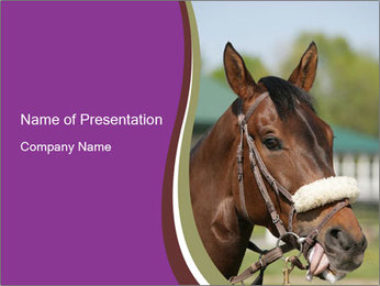 Horse Farm PowerPoint Templates - Slide 1