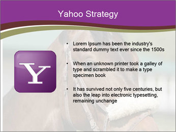 Horse Farm PowerPoint Templates - Slide 11
