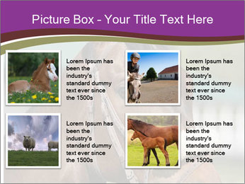 Horse Farm PowerPoint Templates - Slide 14