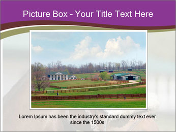 Horse Farm PowerPoint Templates - Slide 15