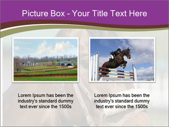 Horse Farm PowerPoint Templates - Slide 18