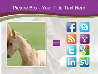 Horse Farm PowerPoint Templates - Slide 21