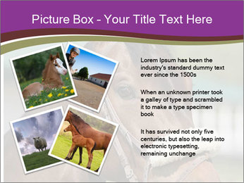 Horse Farm PowerPoint Templates - Slide 23
