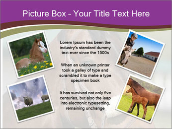 Horse Farm PowerPoint Templates - Slide 24