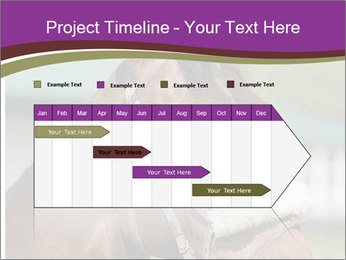 Horse Farm PowerPoint Templates - Slide 25