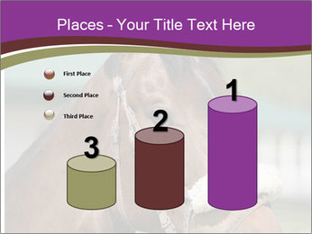 Horse Farm PowerPoint Templates - Slide 65