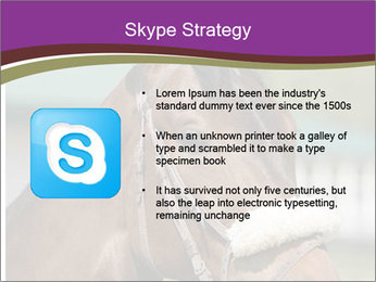 Horse Farm PowerPoint Templates - Slide 8
