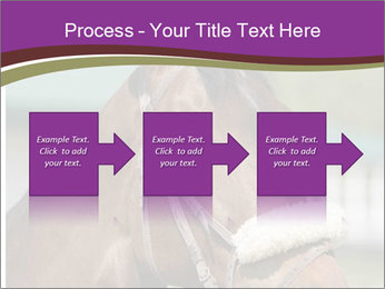 Horse Farm PowerPoint Templates - Slide 88