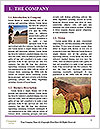 0000089191 Word Template - Page 3