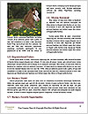 0000089191 Word Template - Page 4
