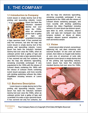 0000089198 Word Template - Page 3