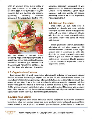 0000089198 Word Template - Page 4