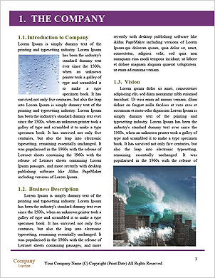 0000089199 Word Template - Page 3