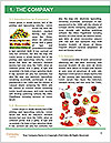 0000089200 Word Template - Page 3