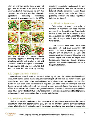 0000089200 Word Template - Page 4