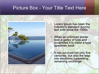 Old Oak PowerPoint Template - Slide 13