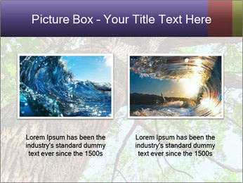 Old Oak PowerPoint Template - Slide 18