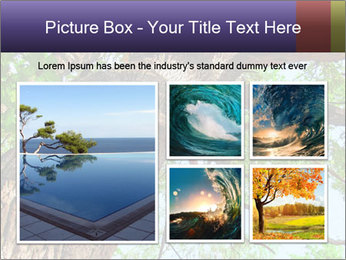 Old Oak PowerPoint Template - Slide 19