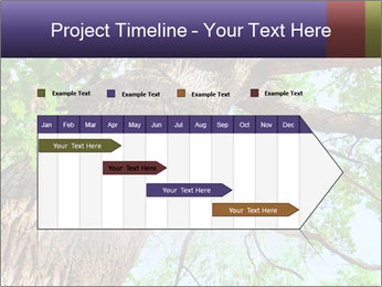 Old Oak PowerPoint Template - Slide 25