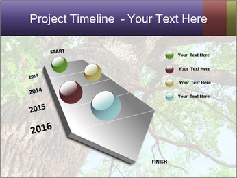 Old Oak PowerPoint Template - Slide 26