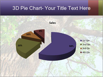Old Oak PowerPoint Template - Slide 35