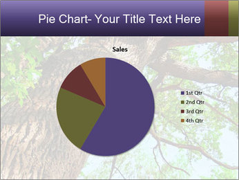 Old Oak PowerPoint Template - Slide 36