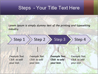 Old Oak PowerPoint Template - Slide 4