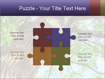 Old Oak PowerPoint Template - Slide 43