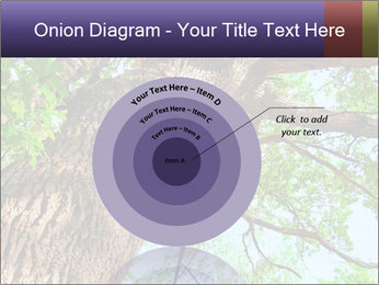 Old Oak PowerPoint Template - Slide 61