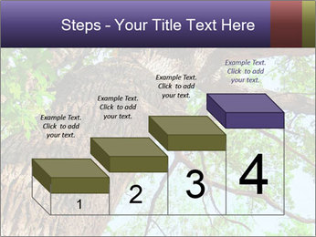 Old Oak PowerPoint Template - Slide 64