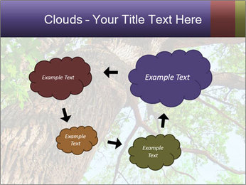 Old Oak PowerPoint Template - Slide 72