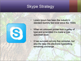 Old Oak PowerPoint Template - Slide 8