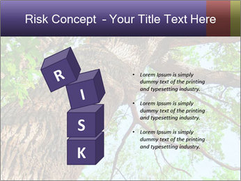 Old Oak PowerPoint Template - Slide 81
